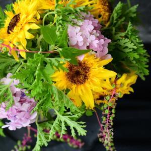 10月からのプライベートレッスンについて|花のある日常