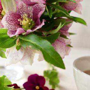 3月レッスンは桜を使った春の籠アレンジ|花のある日常