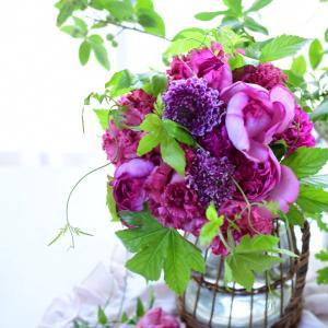 美しい色合わせと花合わせ|花のある日常