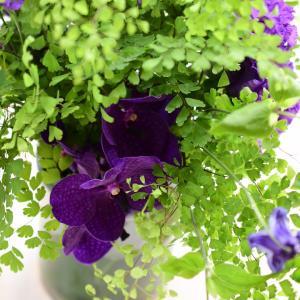 【募集中】8月アイロニー認定校レッスンご案内|花のある日常