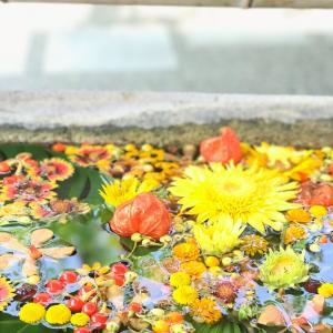 お朔まいりと花手水と風鈴と|花のある日常