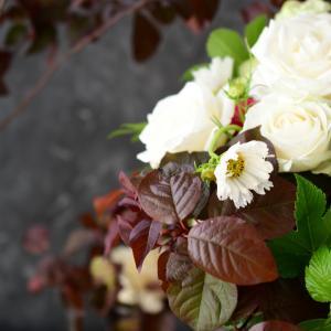 秋の花合わせと色合わせ|花のある日常