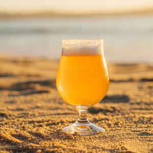 【キリンビールのサブスク】月額定額制でクラフトビールが飲めるサブスク