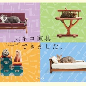 【あさイチ】愛猫もご満悦!福岡県の大川家具職人たちが作る「ネコ家具」