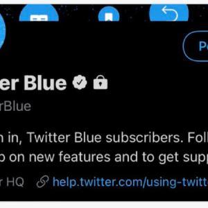【サブスク×ツイッター】Twitterの月額定額制サブスク「Twitter Blue」とは?