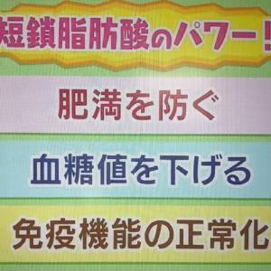 【NHK・あさイチ 】19種類の腸活レシピまとめ!発酵性食物繊維&オートミール