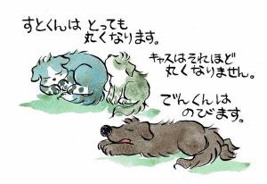 ベーグル犬と〇〇ざぶとん