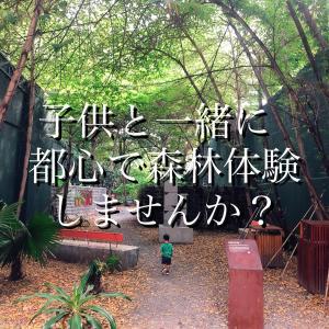 【プノンペンの公園】都心で森林体験!?ODOM GARDENにいってきた