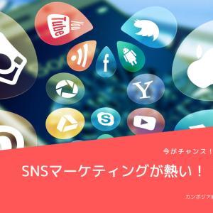 【カンボジア経済】カンボジアのSNSマーケティングはFacebookとTikTokで決まりか!?いや、Instagramもきている?