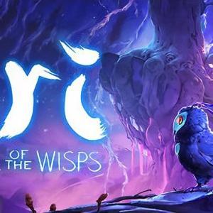 ゲームレビュー『Ori and the Will of the Wisps』 No.11
