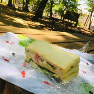 公園で朝ご飯。