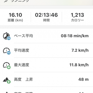 正月休みに不摂生したので、今の自分の限界までマラソンしてみた③