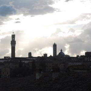 イタリア世界遺産の街シエナ-365シエナのHP作成中