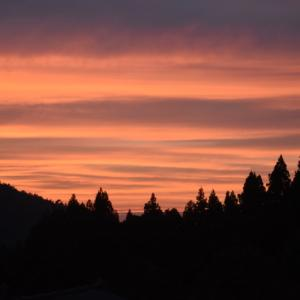 久々に見事な夕焼け ♬