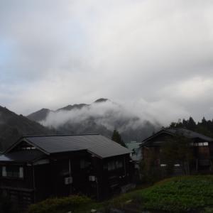里山も紅葉へ向かい始めて