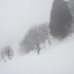 寒気が緩み、靄に包まれた朝