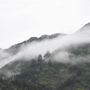 9月の長雨みたいな雨天続きに