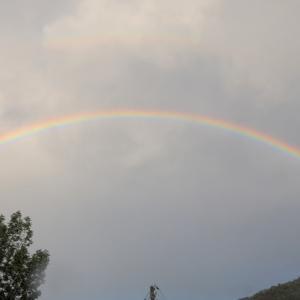 過去画像から「虹」を集めてみました
