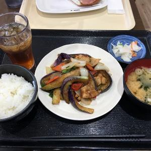 千葉ニュータウン ジョイフル本田フードコート内「大地食堂」でランチ