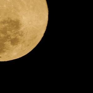 日記~満月の光を浴びながらランニング