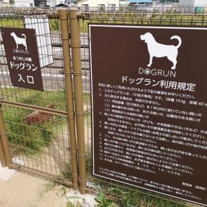 福島県の道の駅「国見 あつかしの郷」のドッグランに行ってみた