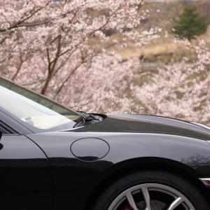 桜・ボクスター(2020)後編