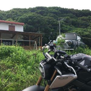 糸島のメキシカンレストランHINODE!!