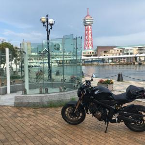 博多ポートタワーを背景に!!