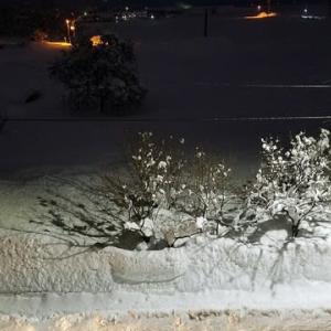雪が凄い事になってん