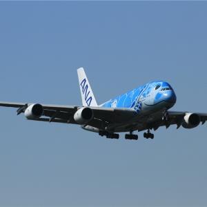A380 FLYINGHONU