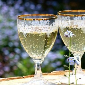 【レビュー】美味しいノンアルコール飲料|妊娠、授乳中でも!