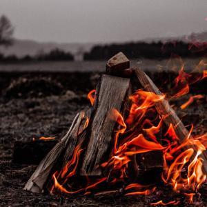 【初心者向け】焚き火の付け方。コツさえ掴めば簡単に火が付く!
