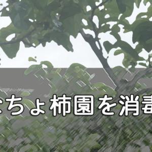 なちょ柿園を消毒
