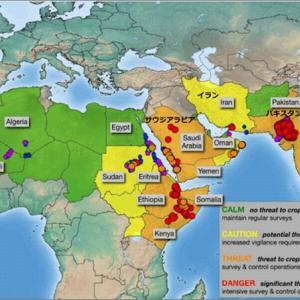 アフリカや中東パキスタン、インドを経て、中国へ、狂気的イナゴ異常発生で世界的食料危機!?