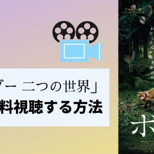 『ボーダー 二つの世界』の映画をフルで無料動画視聴する方法!評価・口コミ