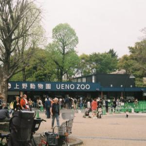 FUJIPET 35 | FUJIPET 35で撮った上野公園の光景