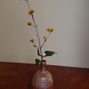 稽古の花です。自宅稽古