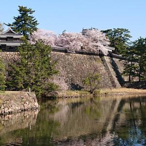 今朝の松江城