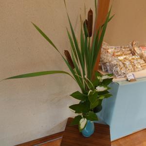 三英堂さんのお店で、綺麗な花を楽しみました