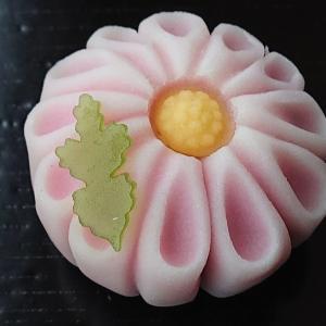 菊香る 和菓子 三英堂