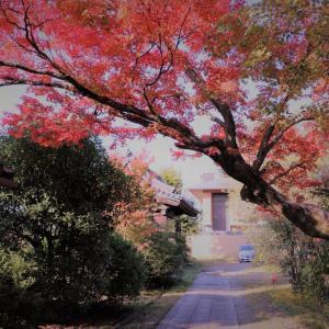 【KYOTO】 山鉾建ても中止で神事を除き「祇園祭のない夏」に、バーチャルに楽しめるコンテンツに注目(2020)