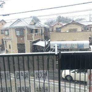雪すごいねー