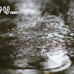 休日は雨ばかりですね。