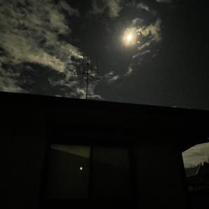 ごまのことと、魚座満月。