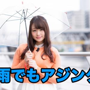 雨でもアジングをする馬鹿【2019/12/17】泉大津アジング(やり方も紹介)
