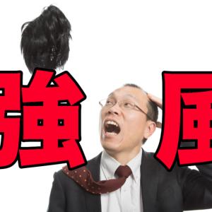 風が強く吹く中、アジをどう釣って行くのか!?【2019/12/20】泉大津アジング
