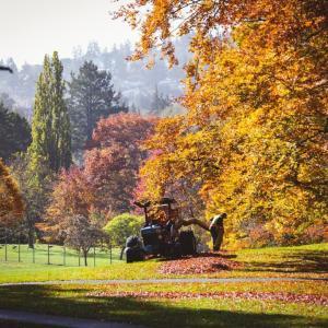 【カナダ留学】カナダの各都市の『秋の天気』はどんな感じ?
