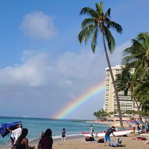 おうちでゆっくりハワイの情報収集