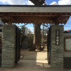 和歌山市小雑賀[西福寺(さいふくじ)]までツーリング