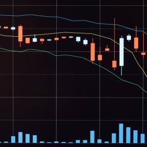 なぜ株価の乱高下はおこるのか
